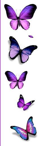 Studio Urody Butterfly - Karolina Kupis - Wieluń